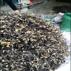 吉林省通化市梅河口市蕨菜干 野生蕨菜,大山里的山野菜天然綠色無污染,