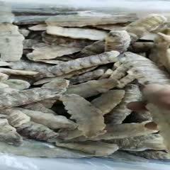 遼寧省丹東市東港市冷凍皮皮蝦 單凍皮皮蝦肉