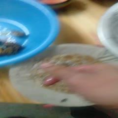 廣西壯族自治區百色市靖西市野生蜂蜜 正宗野生百花蜜