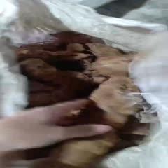 廣東省江門市新會區 本地土茯苓,超靚,看圖就知,白肉,粉質大,甘甜