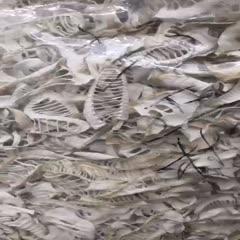 四川省宜宾市长宁县楠竹笋干 楠竹笋尖片,生片,白色,好吃,实惠,天然,无添加剂,各种包装