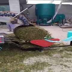 宿州埇桥区玉米青贮 以质量求生存      以信誉求发展