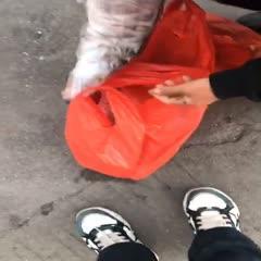 广东省汕尾市城区 带鱼 1斤以上  一箱20斤。
