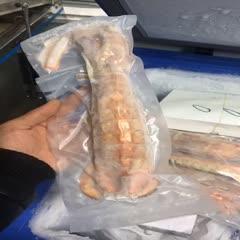 泰国赖尿虾 熟冻皮皮虾 特大号半斤条