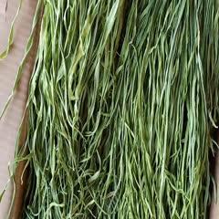 大理宾川县贡菜 备个优品质货,才能让客户卖的安心
