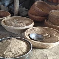 桂林平乐县油茶种子 茶子8块一斤茶油50一斤