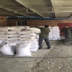 莜麦 莜麦籽种 精选籽种 燕麦胚芽米 燕麦米 小麦