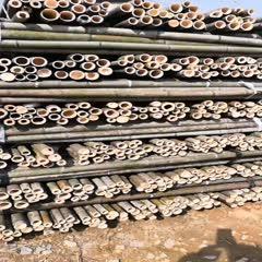 武宁县麻竹 2米5;3米支撑杆质量杆杆