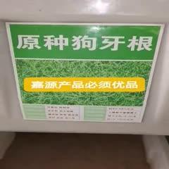 狗牙根种子 狗牙根草坪种子新种子包邮