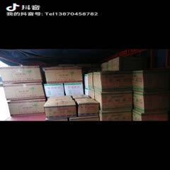 抚州广昌县 茶树菇2020新菇五号菇茶树菇