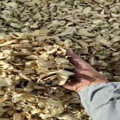 罗平县低硫干姜片 云南干姜批发